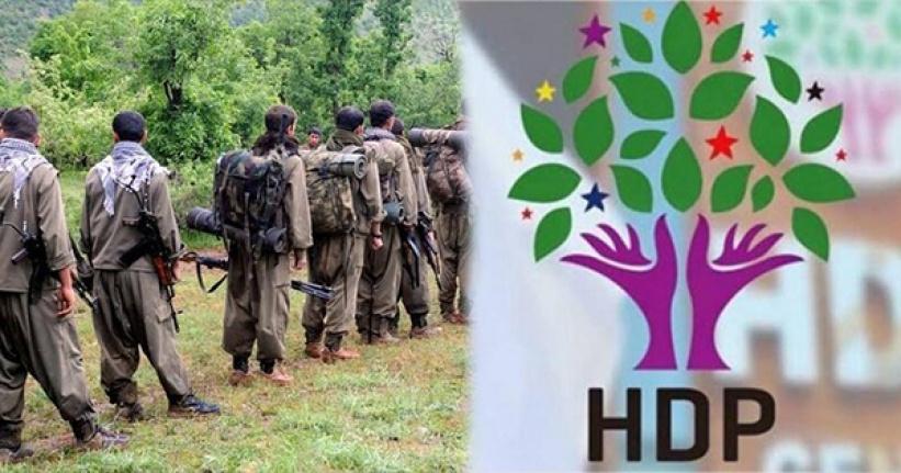 PKK'dan Kaçan Genç, HDP Aracılığıyla Dağa Götürüldüğünü Anlattı