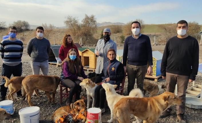 Vatan Partisi Ankara İl Başkanlığı'ndan Karşıyaka Canları Barınağı'na Ziyaret