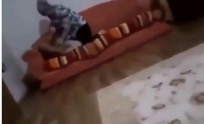 Nurcan Serçe Kimdir? Çocuğunu Boğan Nurcan Serçe Tutuklandı mı?