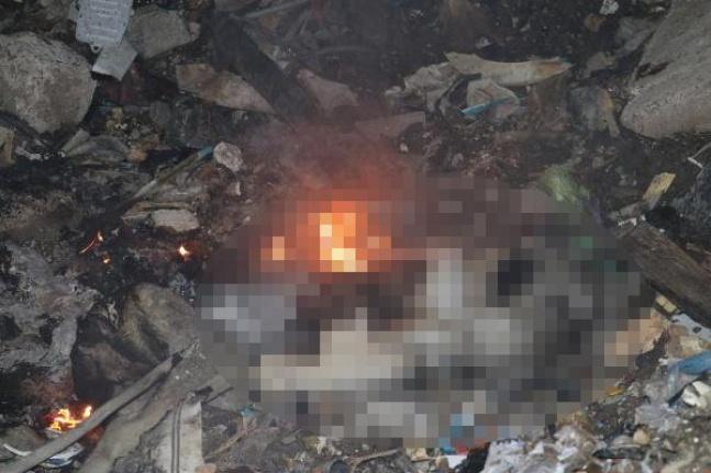 Ankara'da Korkunç İddia: Yakılmış Köpek Cesedi Bulundu!