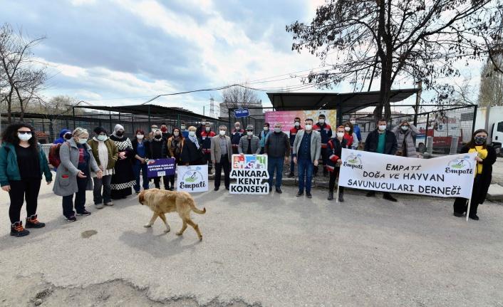 Ankaralı Hayvanseverler Can Dostları için Bir Araya Geldi