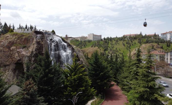 Yeşilin Her Tonu Atatürk Botanik Bahçesi'nde