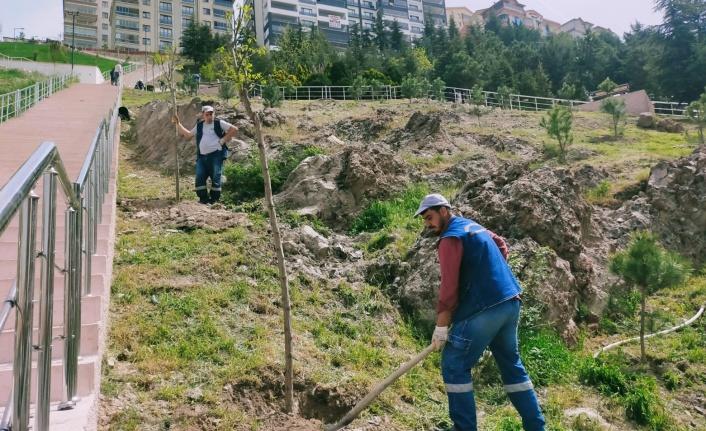Ağaçlandırma Seferberliğinde Vatandaş ve Belediye İşbirliği