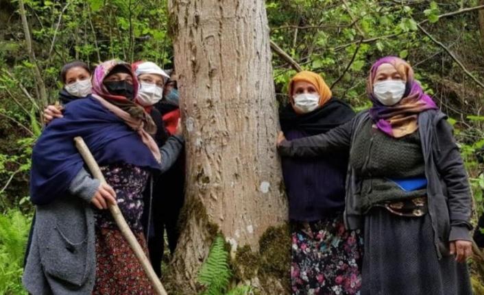 İkizdere'de Taş Ocağı İstemeyen Bölge Sakinlerine Gözaltı