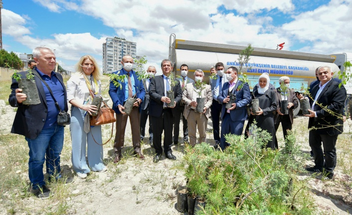 ASKİ'den 'Yeşilin Başkenti' Projesine 5 Bin 145 Fidanla Destek