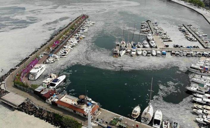 Marmara'yı Kirleten 16 İşletme için Kapatma Kararı