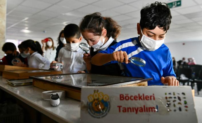 Ankaralı Çocuklara Böceklerle Ekoloji Eğitimi Verildi