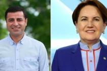 HDP'li Kaplan'dan İyi Parti'ye Cumhurbaşkanı Adayı Teklifi