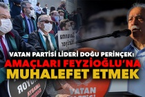Perinçek'ten 'Savunma Yürüyüşü' Açıklaması: Amaçları Feyzioğlu'na Muhalefet