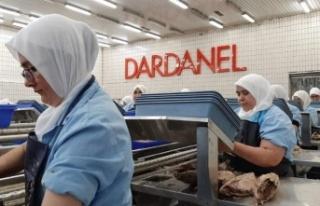 Dardanel'de Korona Çıktı: İşçiler Kapalı...