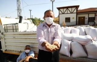 Keçiören'de Çiftçilere Tohum Desteği