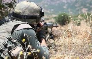 Suriye'de 9 PKK'lı Terörist Etkisiz