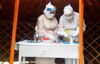 Yeni Salgın Alarmı: Chapare Virüsü