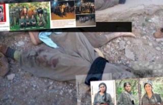 PKK'da Dehşet Veren İnfaz! Önce Tecavüz,...