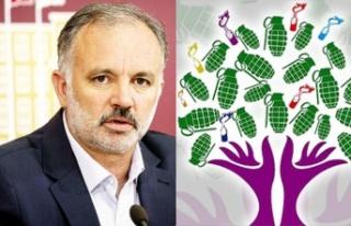 HDP/PKK Dağılıyor: Ayhan Bilgen'den Yeni Parti...