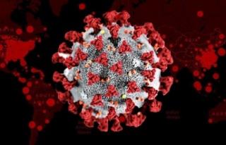 Koronavirüsün Bir Belirtisi Daha Ortaya Çıktı!