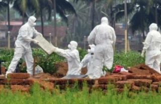 Nipah Virüsü Nedir, Belirtileri Nelerdir? Yeni Pandemi...