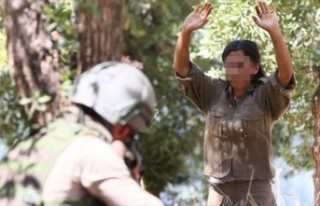 Teslim Olan PKK'lı: Dağa HDP Götürdü, Amerikalı...