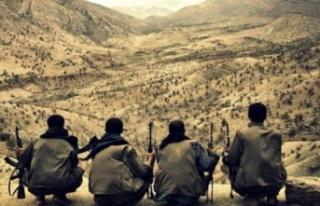 PKK'dan Kaçan Terörist Her Şeyi Anlattı:...