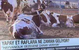 CNN Türk'ten Skandal Haber: Sosyal Medya Yıkıldı!