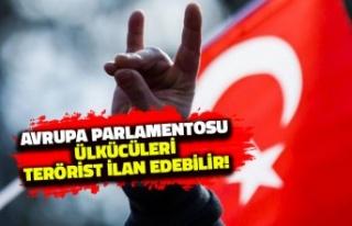 Avrupa Parlamentosu Ülkücüleri Terörist Listesine...