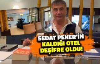 Sedat Peker'in Kaldığı Otel Deşifre Oldu!