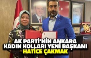 AK Parti'nin Ankara Kadın Kolları Yeni Başkanı...