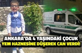 Ankara'da 4 Yaşındaki Çocuk Yem Haznesine...