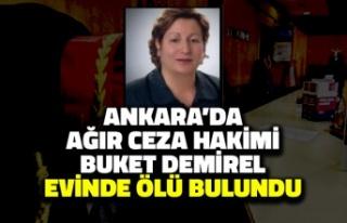 Ankara'da Ağır Ceza Hakimi Buket Demirel Evinde...