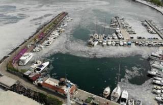 Marmara'yı Kirleten 16 İşletme için Kapatma...