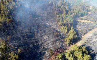 Belediye Başkanı Açıkladı: Adana'daki Orman Yangınında Terör Şüphesi!