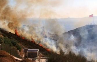 Bodrum'daki Yangında 50 Hektarlık Alan Kül Oldu