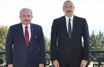 Aliyev'den Türkiye'ye Teşekkür: 'Tek Millet İki Devlet'