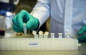 Yeni Araştırma Korkutan Gerçeği Ortaya Çıkardı: Koronavirüs Tedavisinde...