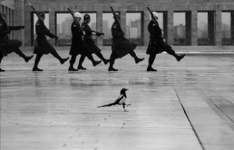 19. Devlet Fotoğraf Yarışması Sonuçlandı: 2020 Yılının Fotoğrafı Ankara'dan