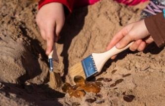 '450-500 Milyon Yıllık Fosiller Bulundu'
