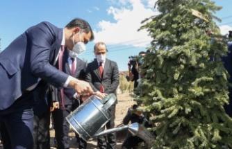 Bakan Kurum, Sincan Belören Millet Bahçesi'ne İlk Fidanı Dikti