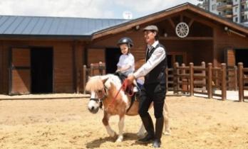 Altındağ'da At Çiftliğine Yoğun İlgi