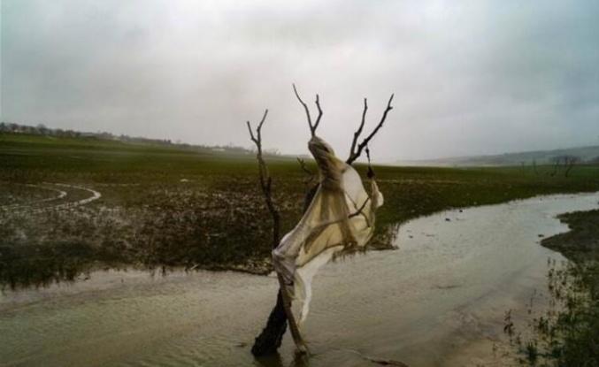 Sular Çekilince Korkutan Manzara Ortaya Çıktı!