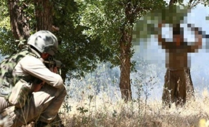 Bakanlık duyurdu: Şırnak'ta 5 terörist teslim oldu